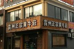 北桥 贵州正宗黄牛莊