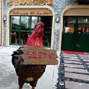 七星海南鸡饭 集盒店
