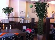 塞纳左岸咖啡西餐厅 爱建店