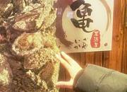 龟户二丁目日本料理 山西路一店