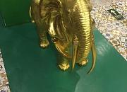 曼谷小象音乐餐厅