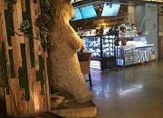 Zoo Steak 动物园牛排 天旺广场店