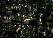 维多利亚音乐餐厅
