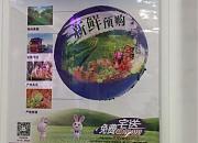 元祖食品 北京路店
