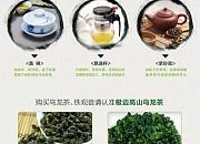 极边茶业 厂部零售店