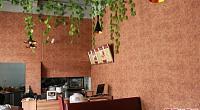 东兴茶餐厅 图片
