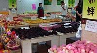 全球鲜果品批发 图片