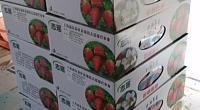 好食草莓店 图片