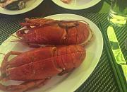 珠海来魅力假日酒店海鲜自助餐