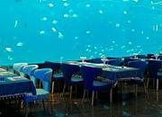瑞德姆海洋演艺主题自助餐厅 亚龙湾店