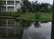 滇池温泉花园酒店.天鹅湖餐厅