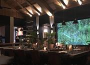 月芽 · 自由餐厅