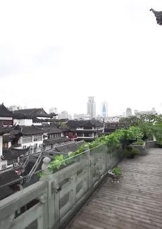 阳台上,可以饱览豫园风光