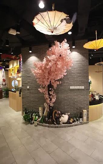 被樱花树和油纸伞的装潢带来劈面而来的日本滋味