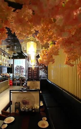 有浪漫樱花的日料餐厅