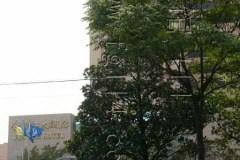 华联商厦金沙江店 金沙江大酒店·婚宴