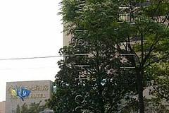 大渡河路 金沙江大酒店·婚宴